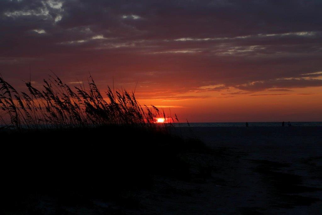BMK - Sunset 20