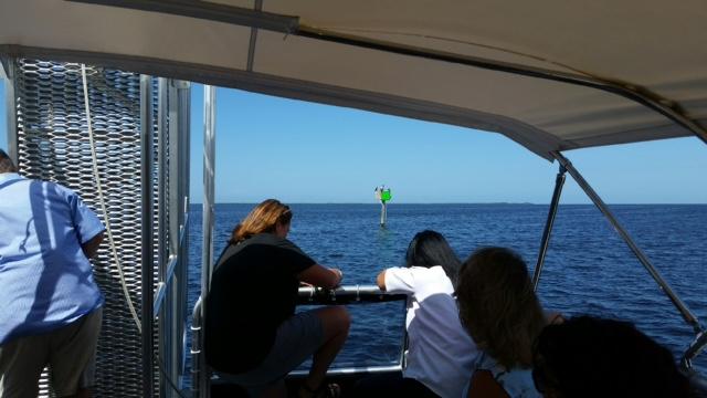 PM - Harbor cruise 3